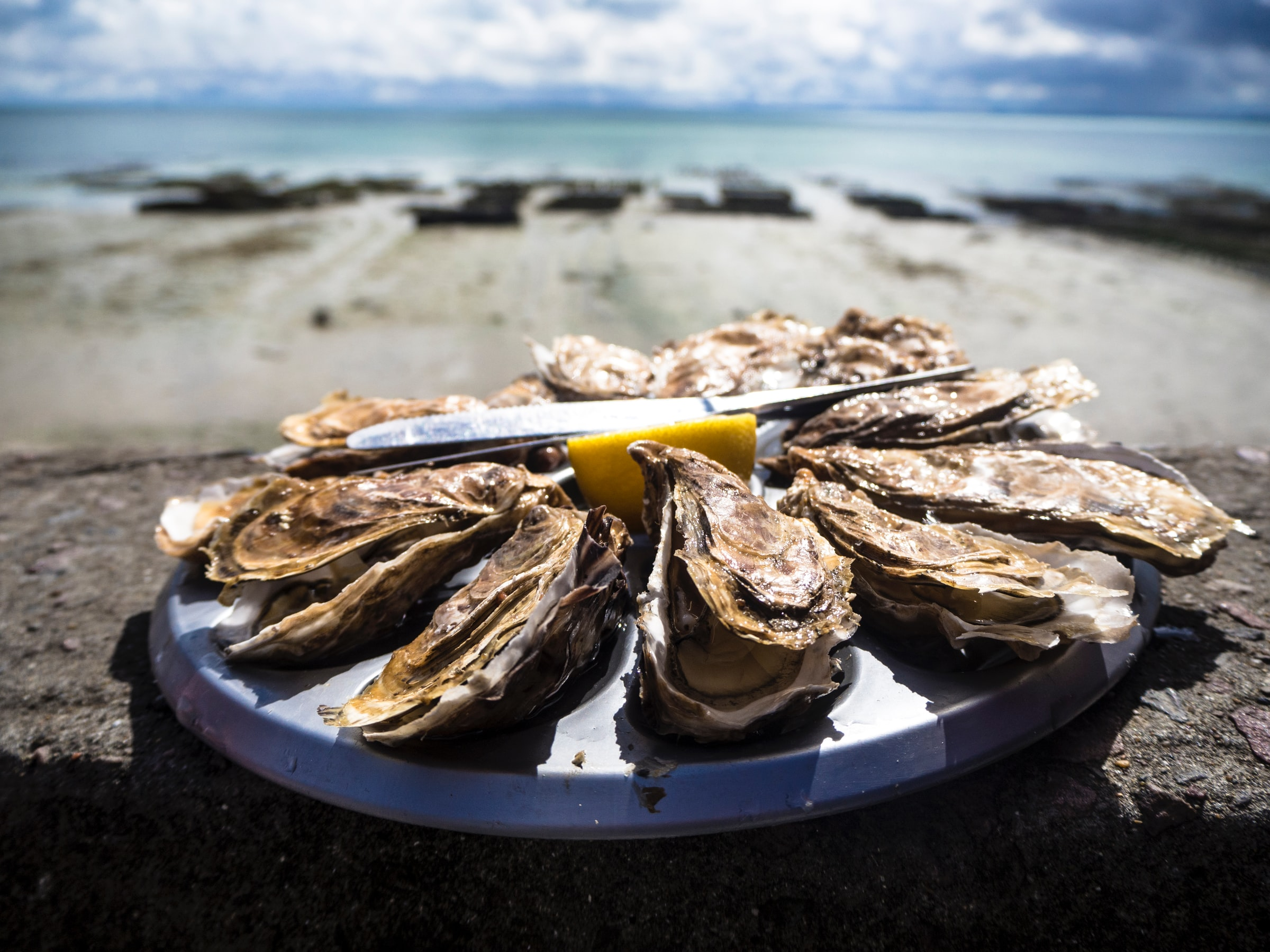 The Complete Guide To Oysters In Dublin